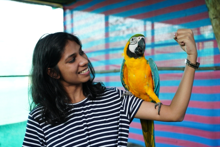 Bird park at a resort in vapi